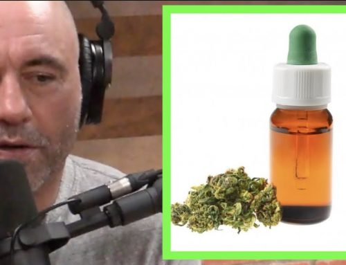 Joe Rogan Explains The Benefits of CBD